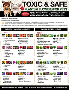 """TLC Safety By Design Premium Toxic and Safe Plants & Flowers Poison for Pets Dogs Cats Emergency Home Alone Large Format 8"""" x 10.5"""" Veterinarian Approved Refrigerator Safety Magnet"""