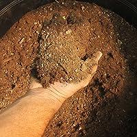 10kg Sustrato para plantas crasas Suculentas Cactus producción