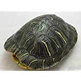 """Red Pomegranate 6542-5 Turtle Shell Green//Gold 9/"""" Decorative Bowl,"""