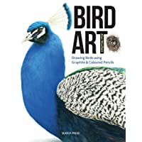 Bird Art: Drawing & Painting Birds Using Coloured Pencils