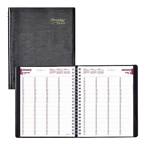 Amazon.com: Brownline - Cuaderno diario de citas profesional ...
