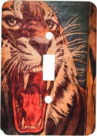 3drose Llc Lsp 89300 1 Florida Sarasota Ringling Museum Circus Museum Us10 Wbi0588 Walter Bibikow Single Toggle Switch Switch Plates Amazon Com
