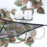 2 Pack Reptile Lizard Hammock Bearded Dragons