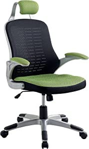 Furniture of America Leonid Pneumatic Height Adjustable Mesh Office Chair, Green