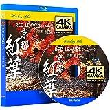 4Kカメラ映像【Healing Blueヒーリングブルー】京都・紅葉 RED LEAVES in Kyoto〈動画約40分, approx40min.〉60fps感動の4Kカメラ映像80種収録 [Blu-ray]