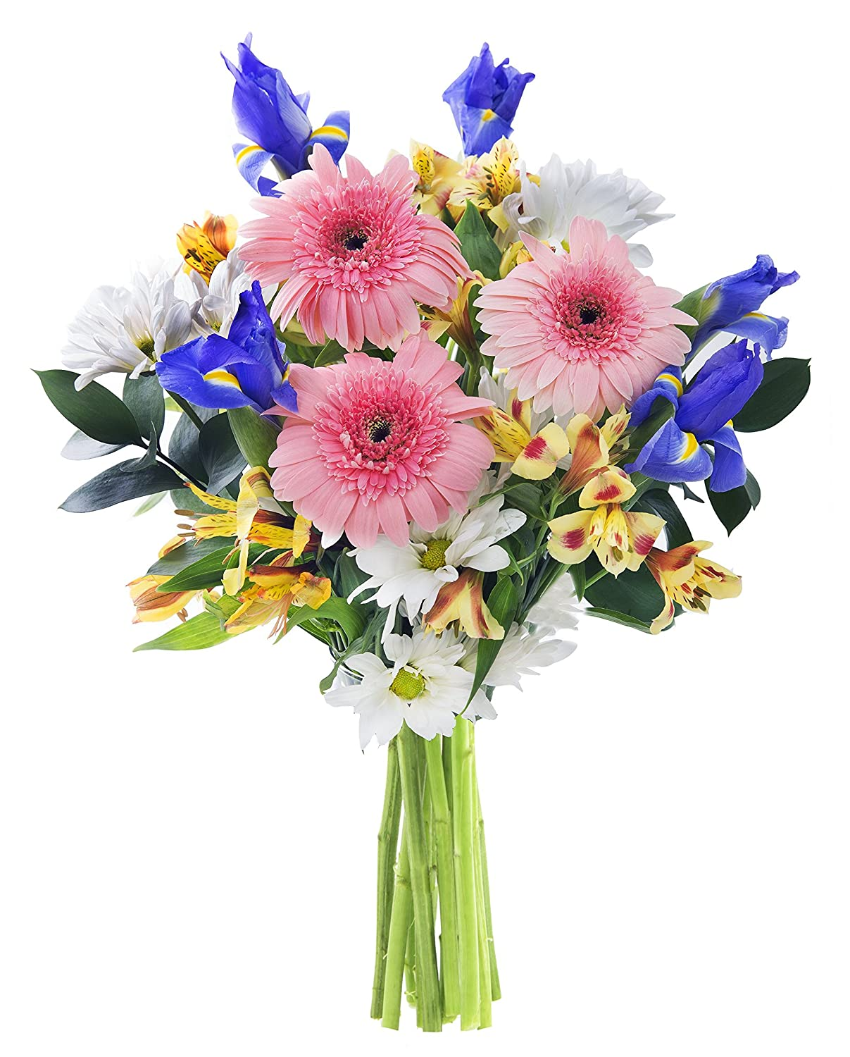 Amazon Happy Birthday Wishes Bouquet 10 Yellow Alstroemeria 3 Pink Gerbera Daisies 5 Blue Irises White Daisy Poms And Lush Greens With Vase