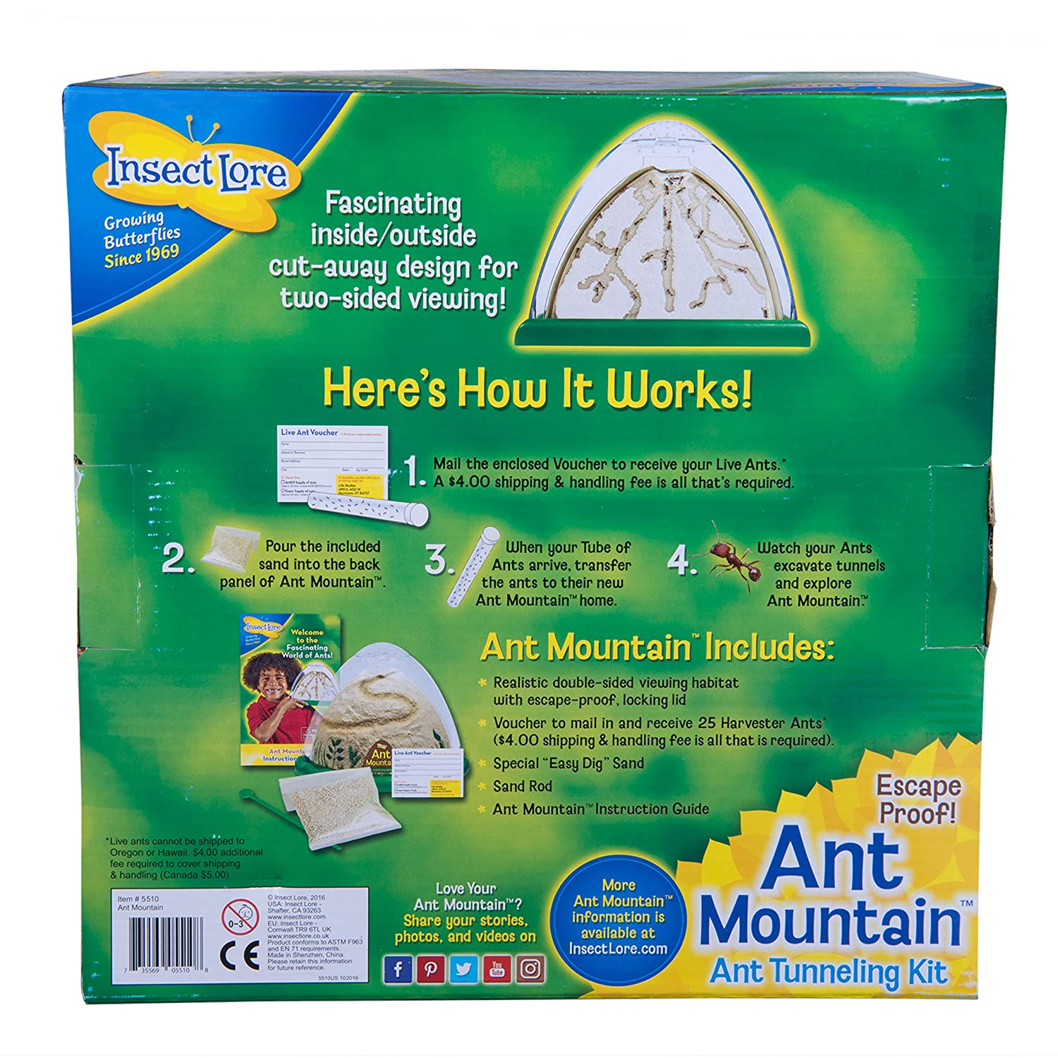 Includes Habitat Sand And Voucher for Live Ants Two Sided Ant Mountain Insect Lore Ant Farm