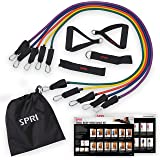 SPRI Resistance Band Kit (5 Exercise Bands, Ankle/Wrist Strap, Door Anchor, Foam Padded Handles, Carry Bag, Exercise Guide)