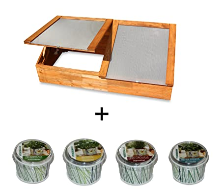 Wooden Cold Frame Greenhouse Herbs Frame Chives, Basil, Parsley and ...