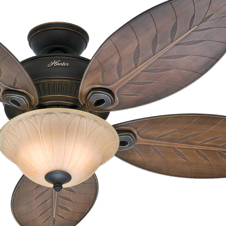 """Hunter Fan 54"""" Outdoor Ceiling Fan with Toffee Glass Light Kit 5"""