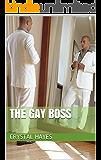 The Gay Boss (The Men Box Book 1)