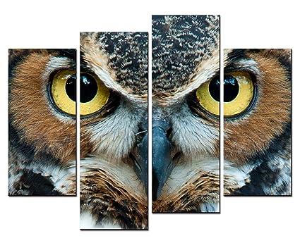 Amazon Com Smartwallart Animal Paintings Wall Art A Owl S Head