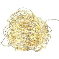 ROGUE String Light LED 40 Bulbs Battery