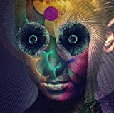 The Insulated World(通常盤)
