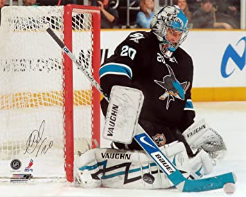 SJ Sharks Evgeni Nabokov Autographed 16x20 Photograph Unframed (COA) at  Amazon s Sports Collectibles Store 56c7bae78