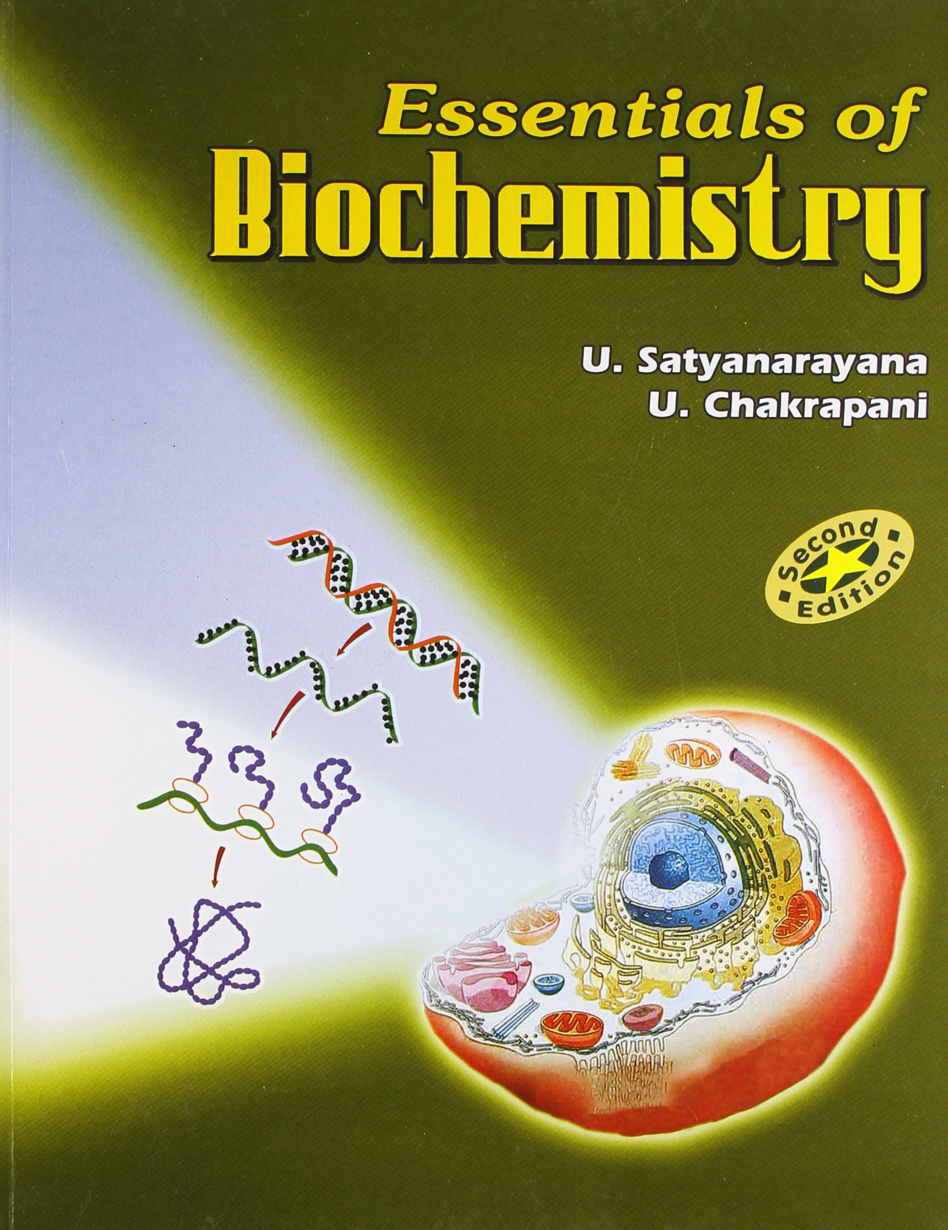 Buy Essentials Of Biochemistry, Second Edition Book Online at Low Prices in  India | Essentials Of Biochemistry, Second Edition Reviews & Ratings -  Amazon.in
