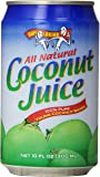 Amy & Brian Coconut Water Original, 10 Ounce Can (Pack of 24)