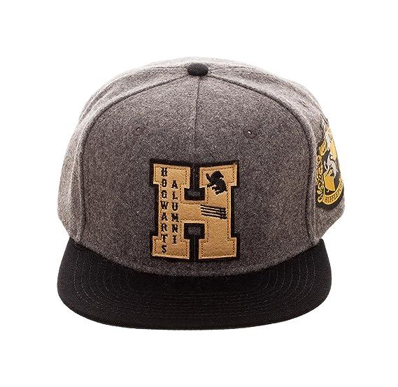 pretty nice 4ca3a 9659a Bioworld Boy s Harry Potter - Hogwarts Alumni - Youth Grey Black Snapback  Hat O