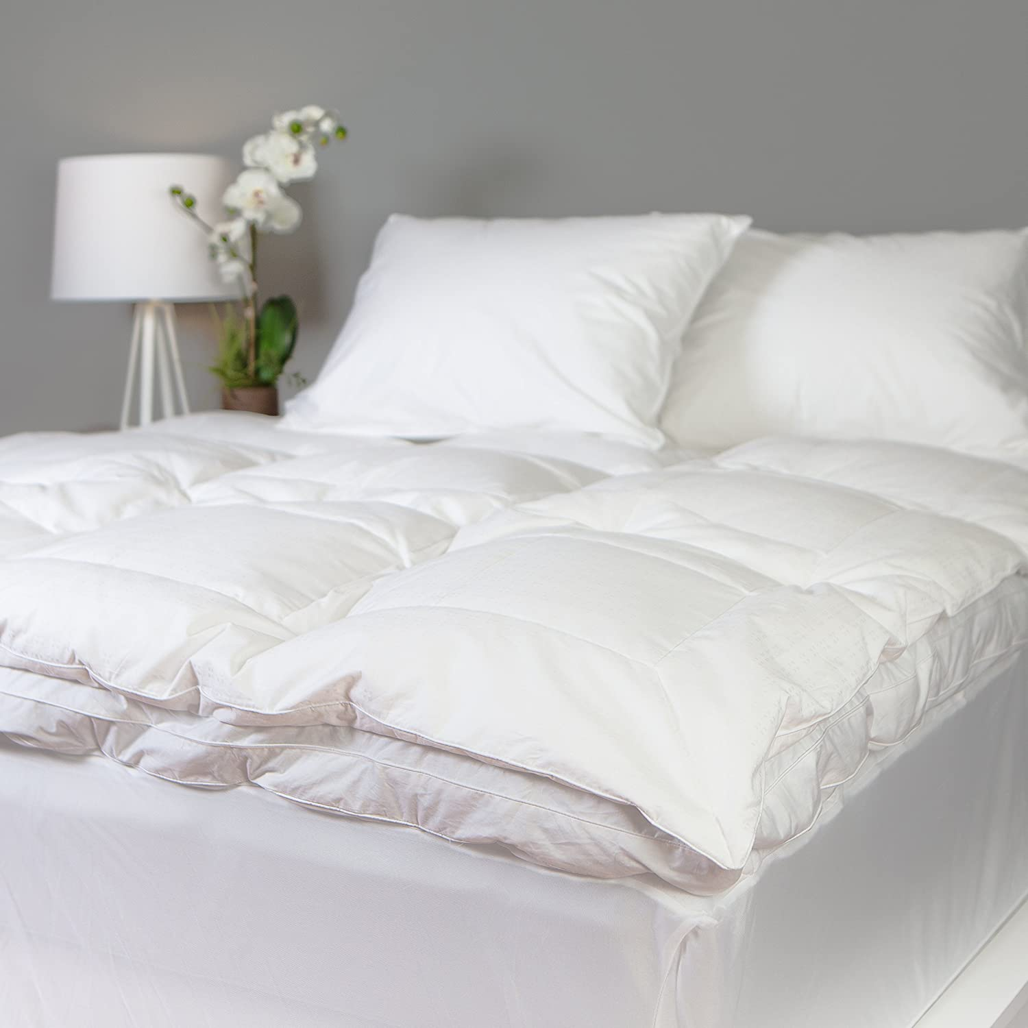 Allied Essentials Luxe 100% Cotton White Down Feather Mattress Bed Topper, White, Twin Twin Allied Home FB000207