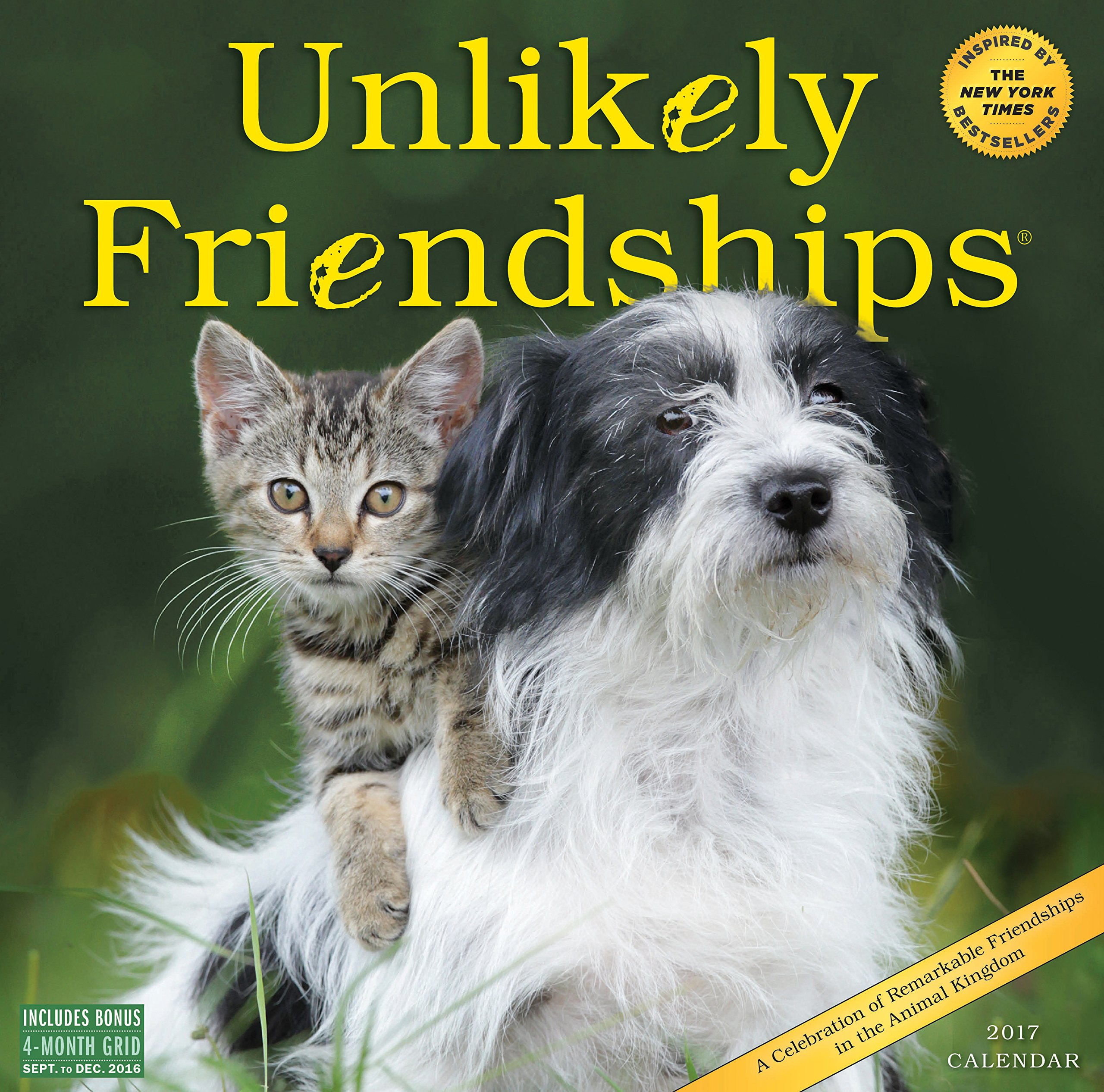 Unlikely Friendships Wall Calendar 2017 product image