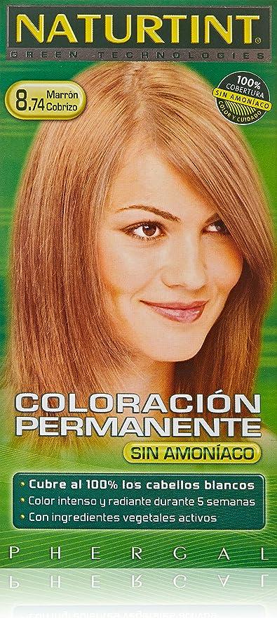 Naturtint Coloración Del Cabello 1 Unidad 150 g: Amazon.es ...