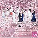 NEVER SAY GOODBYE ~arigatou~(DVD付)
