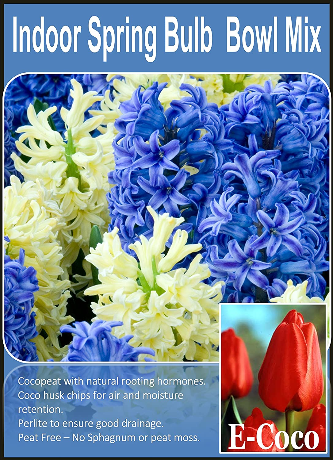 BULB FIBRE for INDOOR SPRING BULB BOWLS - READY TO USE - with PERLITE (1 LITRE) E-COCO PRODUCTS UK