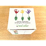 Vegetable Growing Kit for Children - Educational Gift, Healthy grow your own garden