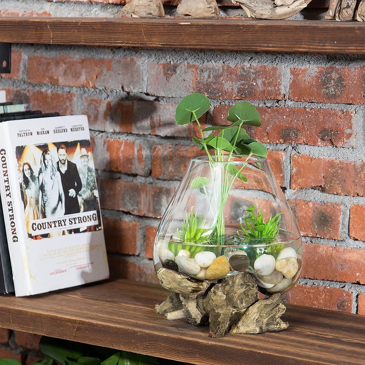 MyGift Natural Driftwood & Clear Molten Glass Bowl Plant Terrarium