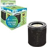 Guardian Technologies Germ Guardian FLT4700 True HEPA Genuine Air Purifier Replacement Filter, 1 Count