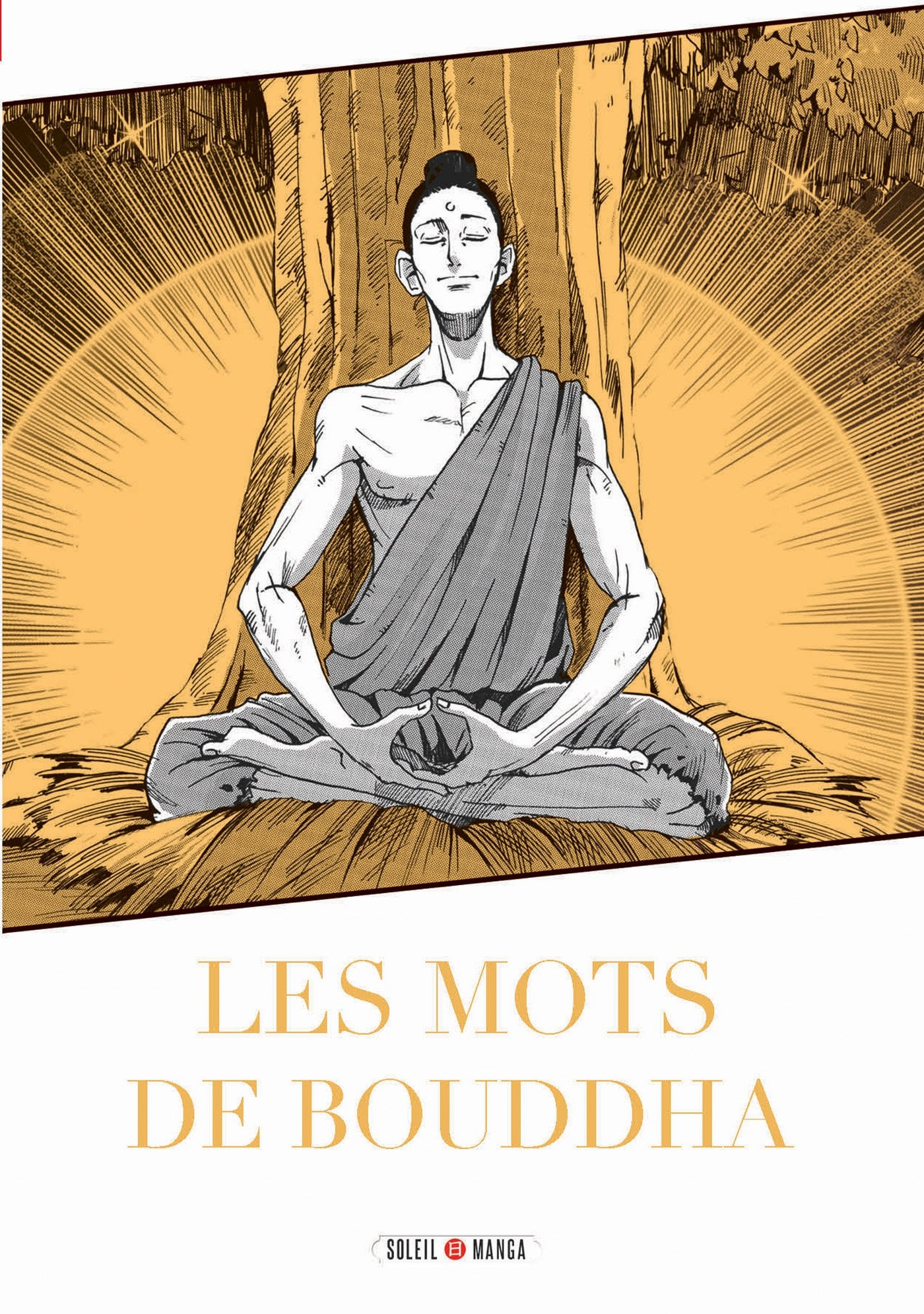 Amazon Fr Les Mots De Bouddha Variety Artworks Anne
