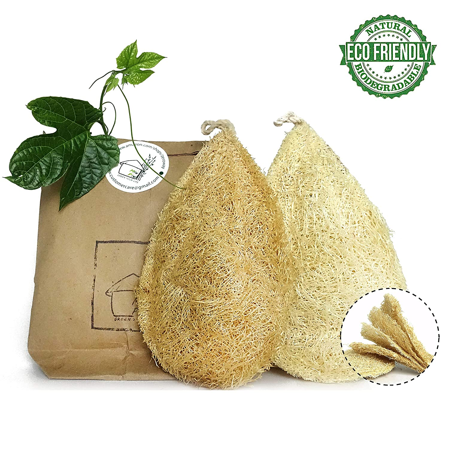 Natural Dish Scrubber | Pack 2 Vegetable Sponge for Kitchen |100% Loofah Plant | Cellulose Scouring Pad | Biodegradable Compostable Dishwashing | Zero Waste Product | Luffa Loofa Loufa Lufa