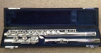 Excellent Buffet Crampon Flute 6000 Ii Amazon Co Uk Musical Instruments Download Free Architecture Designs Scobabritishbridgeorg