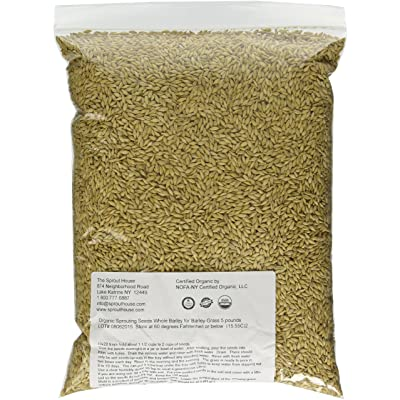 The Sprout House Whole Barley Seeds for Barley Grass Juice Organic Sprouting Seeds 5 Pounds Resealable Stand up Pouch Used for Malt for Beer Brewing Malting : Grains : Garden & Outdoor