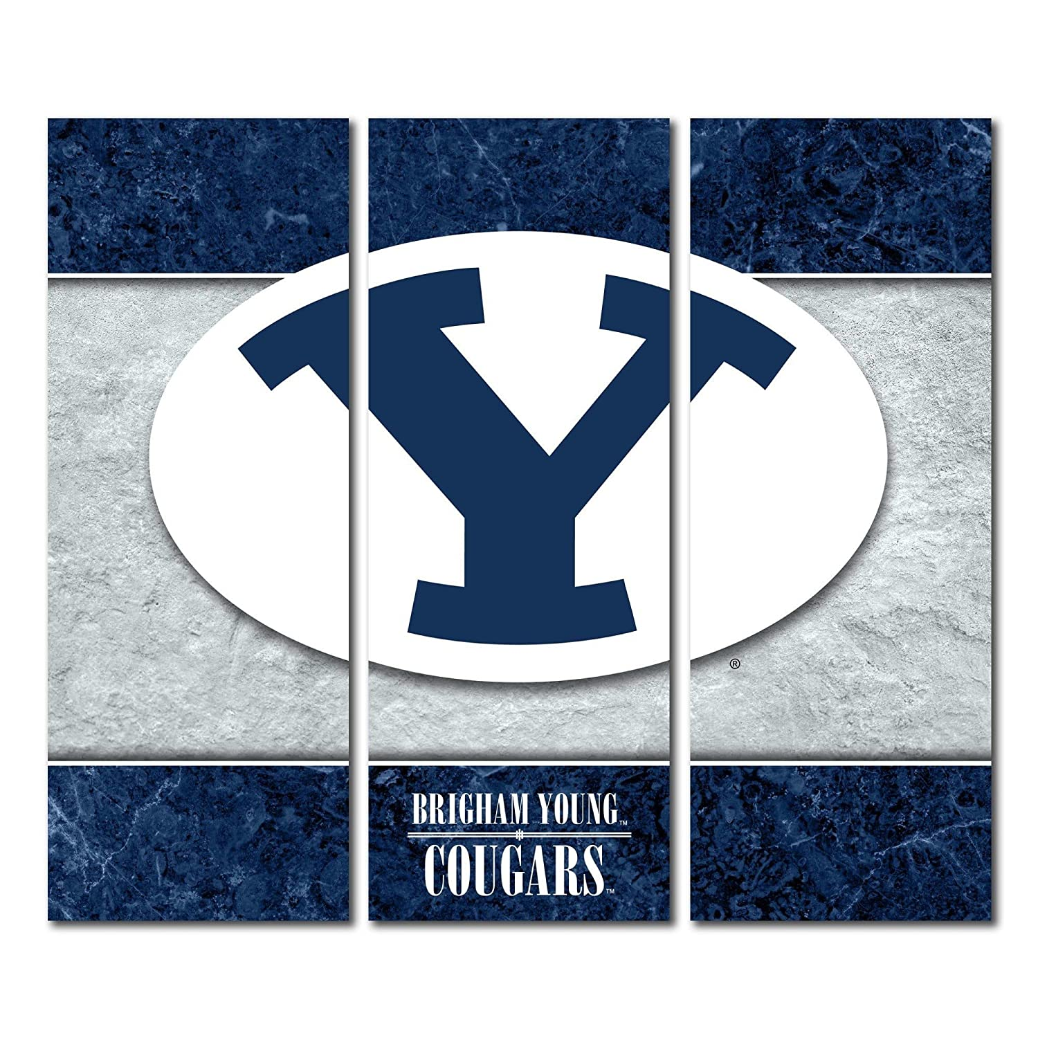 Brigham Young University BYU Cougarsキャンバス壁アートTriptych二重枠デザイン  48x54
