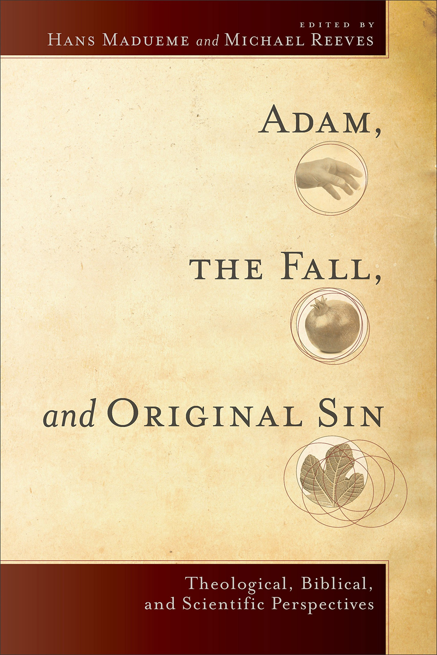 Adam, The Fall, And Original Sin: Theological, Biblical, And Scientific  Perspectives: Hans Madueme, Michael Reeves: 0884286565152: Amazon: Books