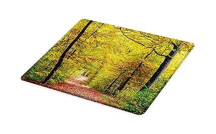 5db55418a600c Amazon.com: Lunarable Tree Cutting Board, Nature Theme Autumn Forest ...