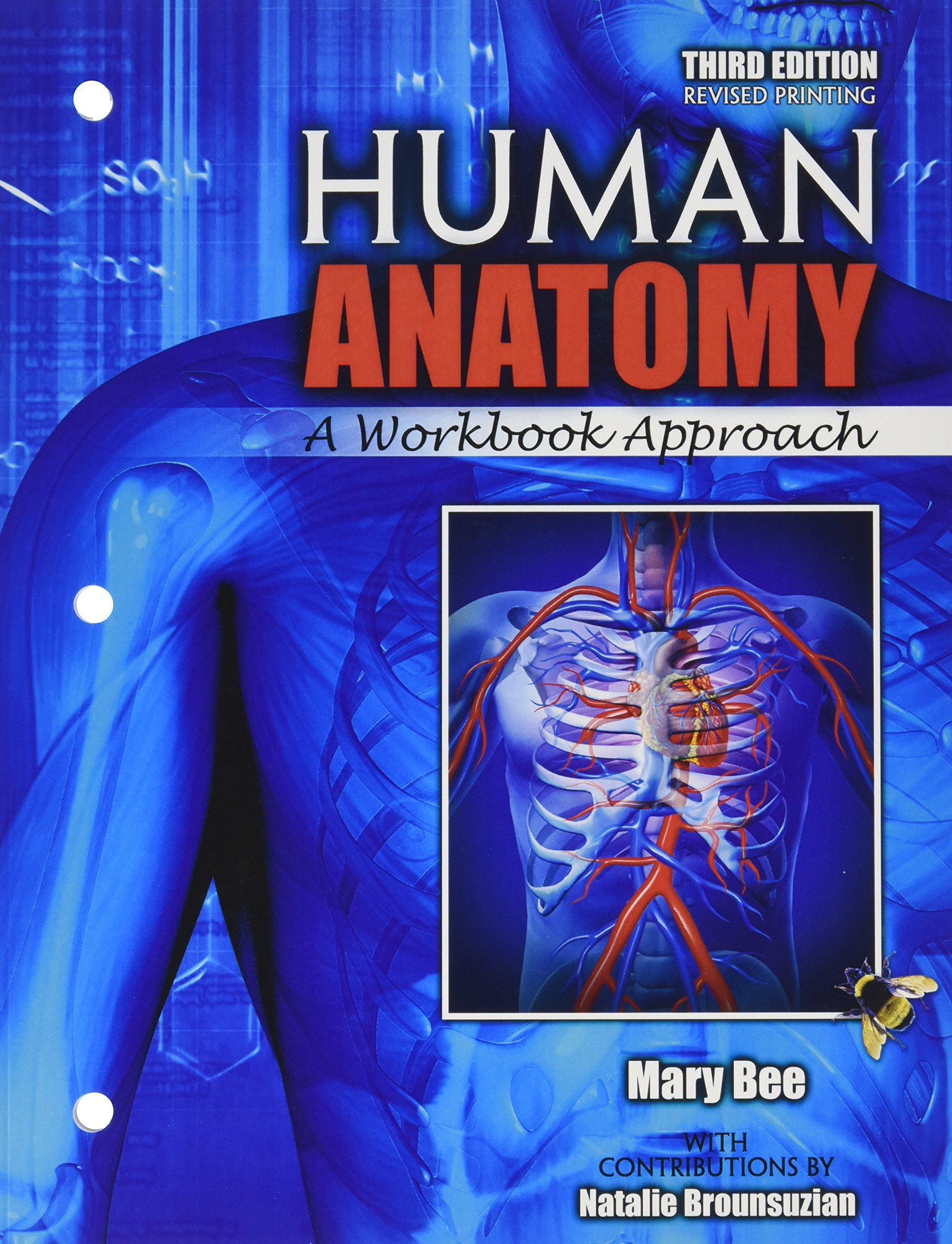 Buy Human Anatomy A Workbook Approach Book Online At Low Prices In