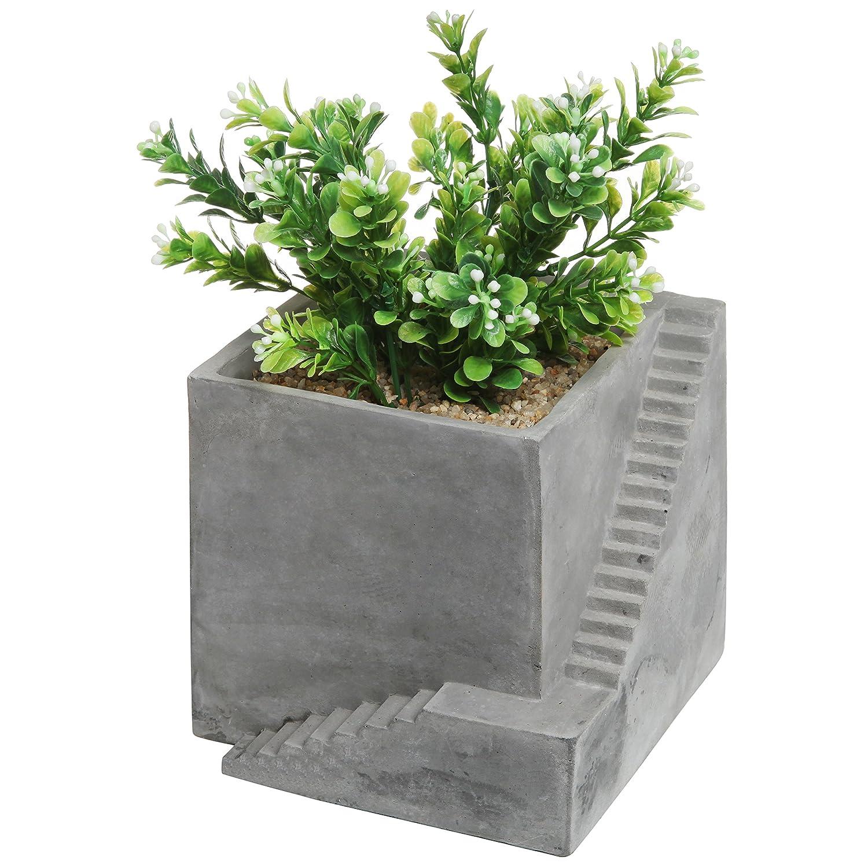 Amazon.com : Modern Square Gray Cement Cube Building U0026 Stairs Design  Succulent Planter Pot / Small Plant Box   MyGift : Patio, Lawn U0026 Garden
