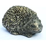 SPIKE Hedgehog Baby
