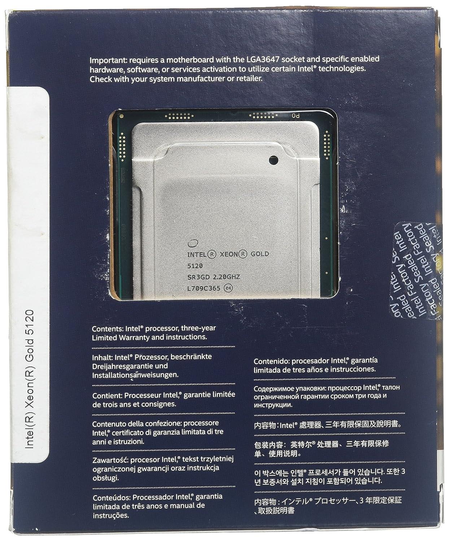 Intel Xeon 5120 - Procesador (Intel® Xeon® Gold, 2,20 GHz, LGA 3647, Servidor/estación de Trabajo, 14 NM, 64 bits): Intel: Amazon.es: Informática