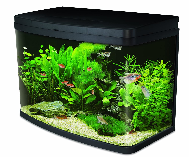 luxus aquarium 10 litres id es de conception de table basse. Black Bedroom Furniture Sets. Home Design Ideas