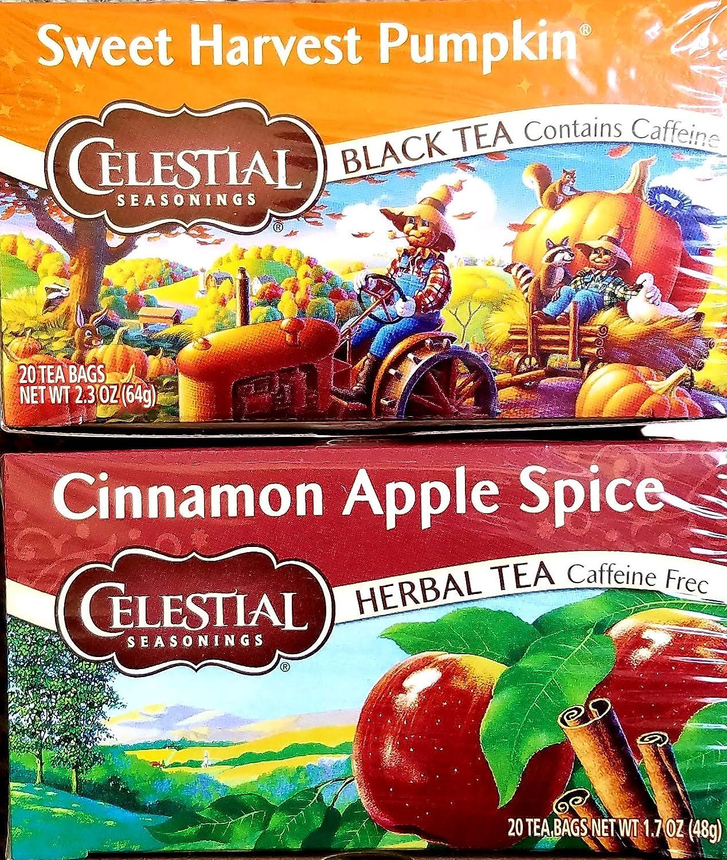 Cinnamon Apple Spice, Sweet Harvest Pumpkin - Tea Bags - Limited Edition Fall Variety Bundle of 2 Boxes - 40 Total Tea Bags