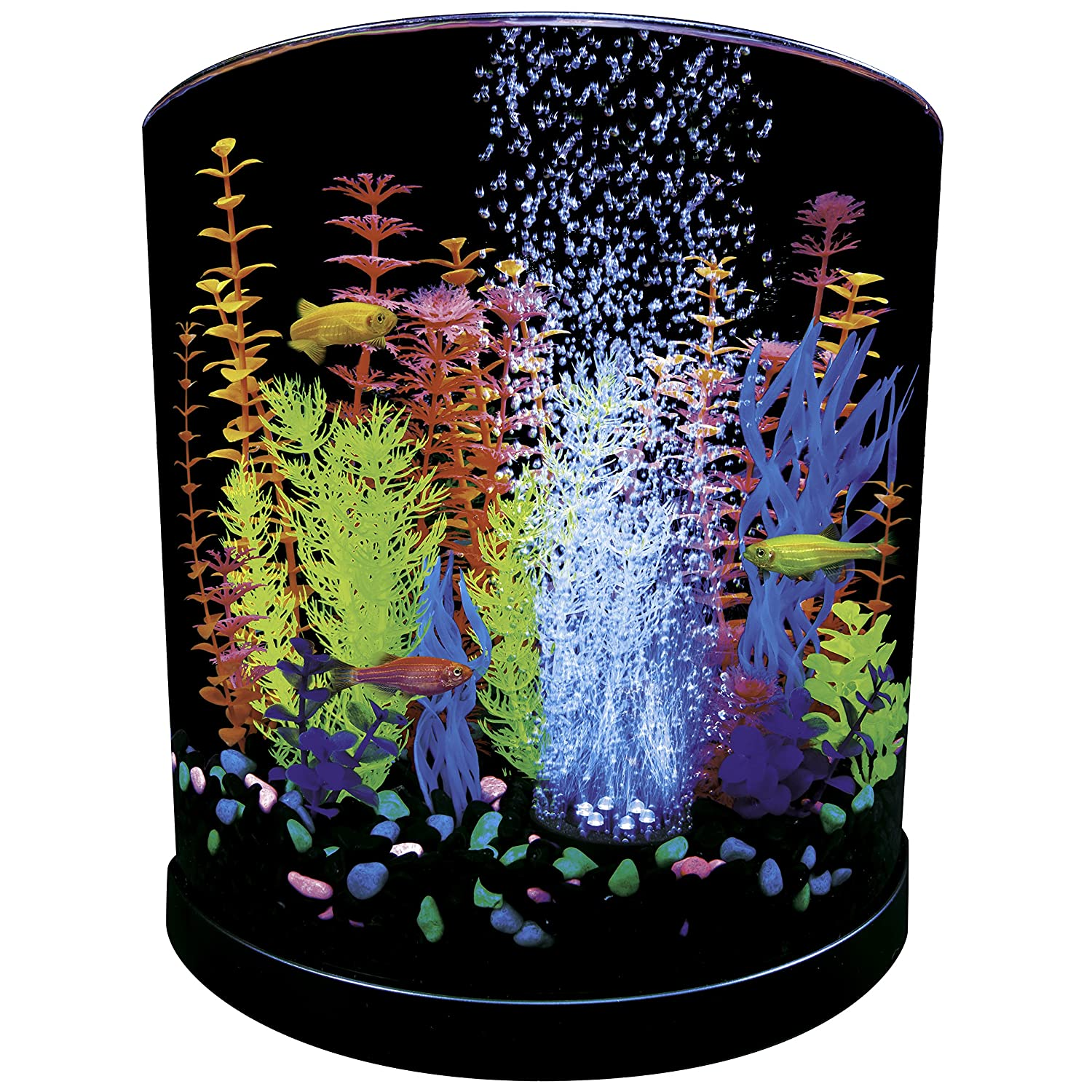 Tetra 3 Gallon Half Moon Fishtank In Many Styles Fish & Aquariums Aquariums & Tanks