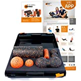 Blackroll Orange Die Faszienrolle, SMR-Set mit 30 cm, Standard, inkl. Koffer, Übungs-Poster und -Booklet