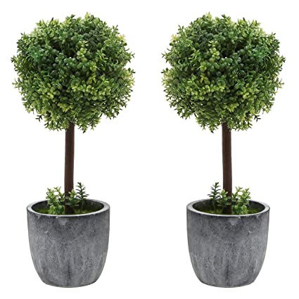 Very valuable artificial topiary trees