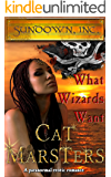 What Wizards Want: an erotic pirate romance (Sundown, Inc. Book 3)