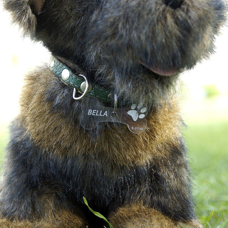 B/ütic GmbH Plexiglas Hundemarken Individuell graviert Acrylglas Anh/änger Namensschilder