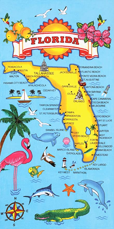 Amazon.com: Florida Map Velour zilian Beach Towel 30x60 Inches ... on