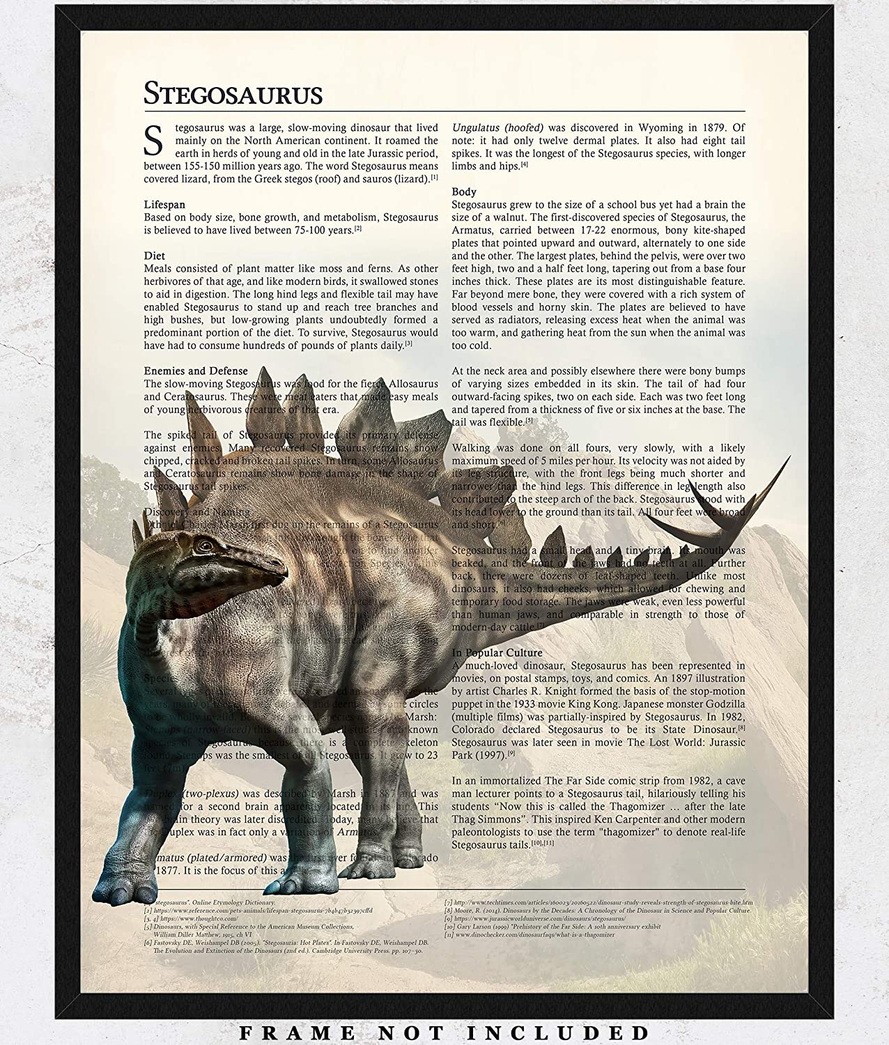 6e9a4042279 Amazon.com  Stegosaurus Dinosaur Wall Art Decor Prints  11x14 Unframed  Picture - Unique Room Decor for Boys Makes A Great Educational Gift for all  ages!